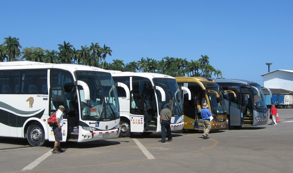 Sustainable tourism speaker and consultant - tour buses